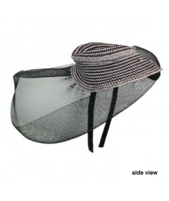 Horse Hair Dish Headpiece Trimmed with Straw Trilby